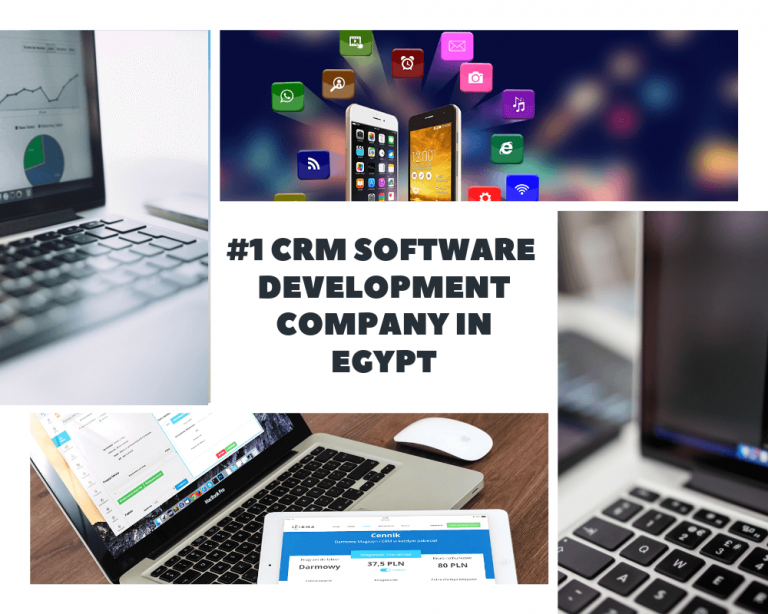CRM SOFTWARE DEVELOPMENT COMPANY IN EGYPT (1)